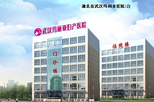 Hubei Wuhan Maryland Hospital