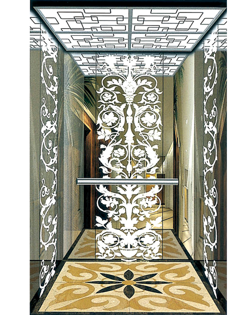 Passenger Elevator Car Decoration SSE-J026