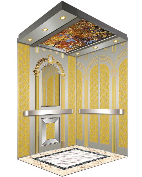 Passenger Elevator Car Decoration SSE-J030