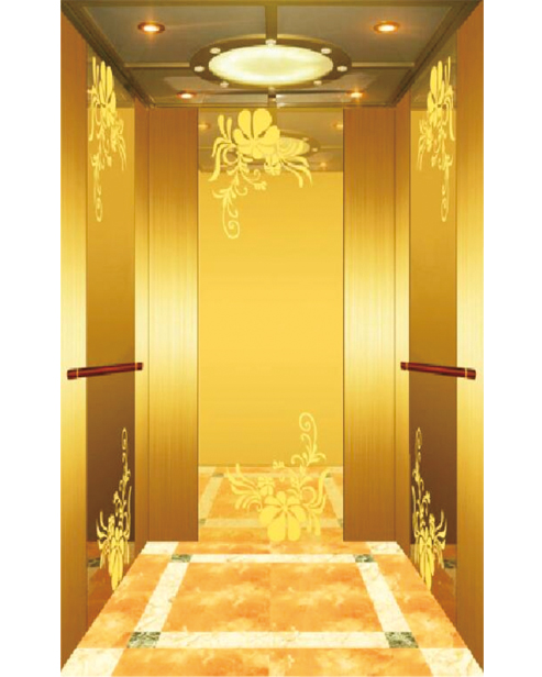 Passenger Elevator Car Decoration SSE-J036