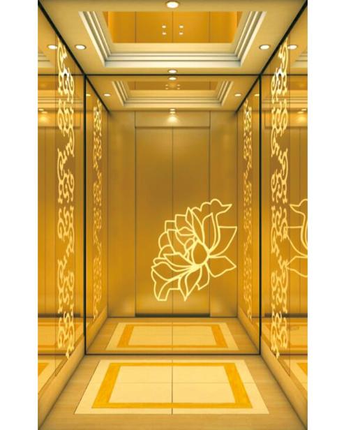 Passenger Elevator Car Decoration SSE-J038