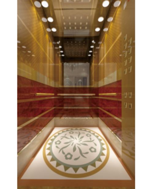 Passenger Elevator Car Decoration SSE-J048