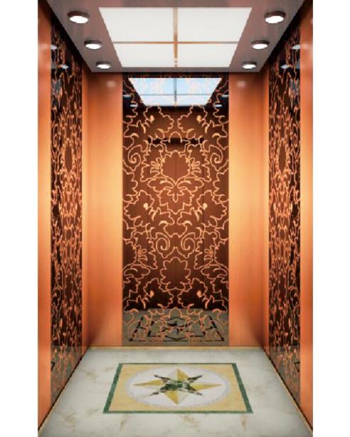 Passenger Elevator Car Decoration SSE-J054