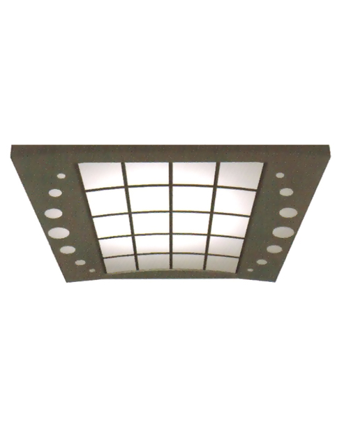Ceiling Serie SSE-D017