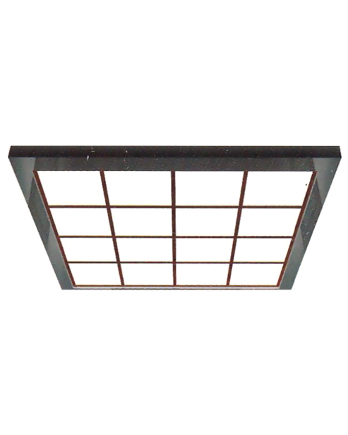 Ceiling Serie SSE-D030
