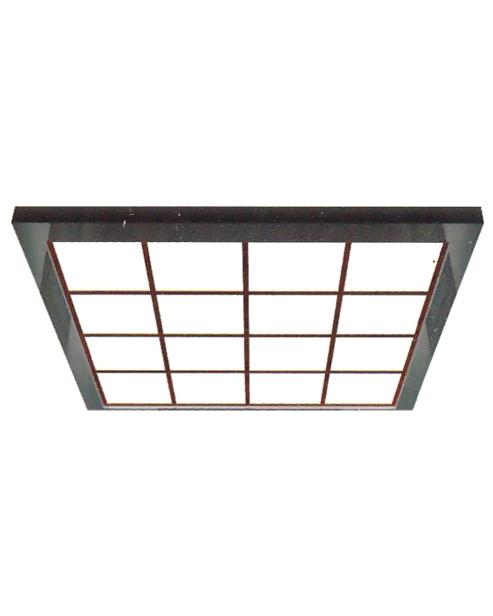 Ceiling Serie SSE-D030