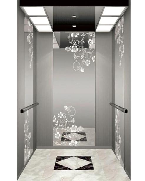 Passenger Elevator Car DecorationSSE-J016